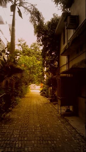 Driveway, the childhood runway